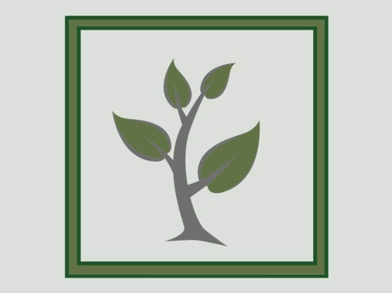Bild Pflanze 1 (1)